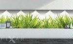 Fototapeten Grass